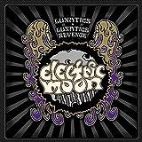 Lunatics & Lunatics Revenge by Electric Moon (2015-05-04)