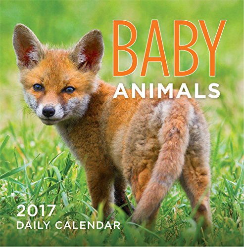Turner Photo 2017 Baby Animals Photo Daily Boxed Calendar - Calendar Off Daily