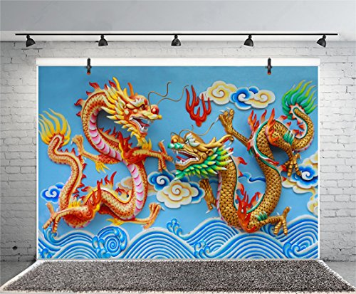 (Leyiyi 5x3ft Photography Backgroud Cartoon Dragon Backdrop Traditional Chinese Character Happy Chinese Day New Year SsangYong Play Beads Ancient Animal Legend Photo Portrait Vinyl Studio Video Prop)
