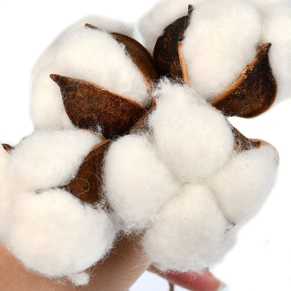 ATPWONZ 20 Pack Rustic Natural Cotton bolls with Faux Tall Stems Cotton Stems Flower for Farmhouse Style Antique Floral Display Furniture Wedding Decoration