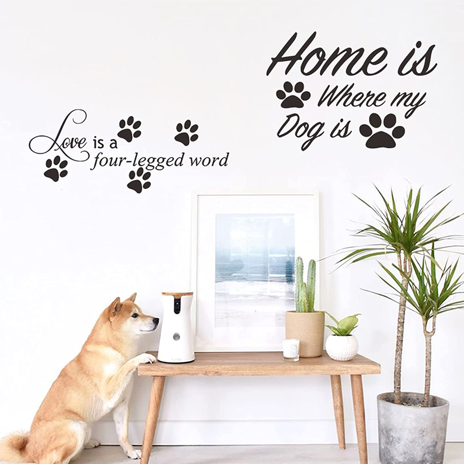 Dog Decor Stickers, Wall Stickers for Dogs Quotes Word Decals of Love is a Four Legged and Home is Where My Dog is for Dog Wall Decor.(2 Sheets)