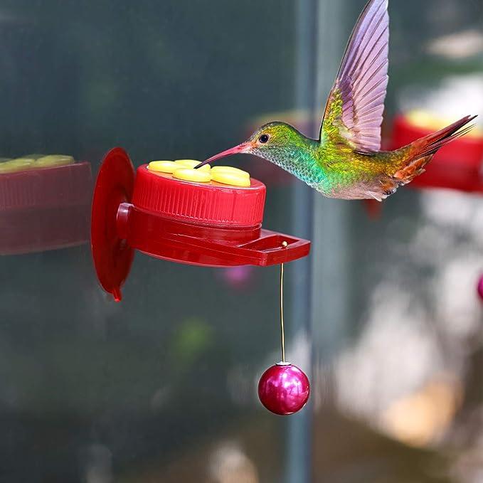 Amazon.com: Comedero de colibrí de mano de hoja de roble ...