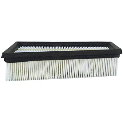 Luber-finer AF4029 Heavy Duty Air Filter: Automotive