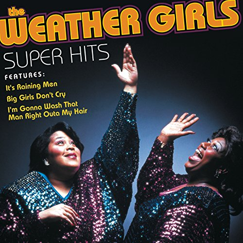 the weather girls its raining men
