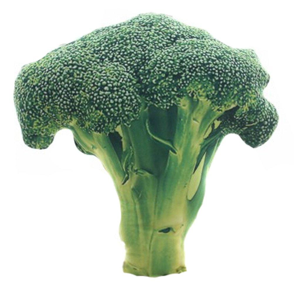 Amazon.com: mytodo Simulación verduras Brócoli Cebolla ...