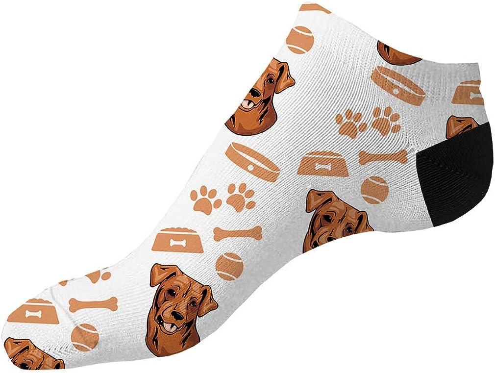Chesapeake Bay Retriever Dog Pattern #4 Men-Women Adult Ankle Socks