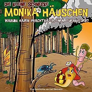 Die kleine Schnecke Monika Häuschen 48: Warum haben Prachtkäfer einen Feuermelder? (CD de audio)
