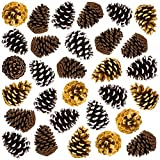 30 Large 4' Pine Cones Thanksgiving Home Decoration Set. Use it with Harvest Pumpkins Gourds Pinecones and Leaves to Decorate and make your own Holiday Wreath and Centerpiece Fall Autumn Wedding Décor