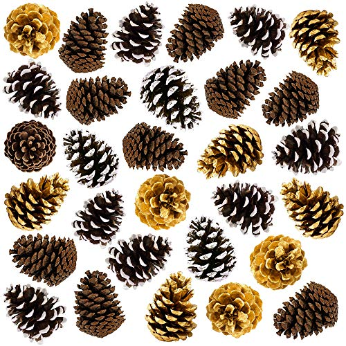 "30 Large 4"" Pine Cones Thanksgiving Home Decoration Set. Use it with Harvest Pumpkins Gourds Pinecones and Leaves to Decorate and make your own Holiday Wreath and Centerpiece Fall Autumn Wedding Décor"