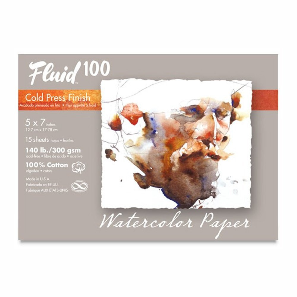 Speedball Art Products 812705 Fluid 100 Artist Watercolor Paper 140 lb Hot Press 100/% Cotton Natural White 15 Sheets 5 x 7-Inch Pochette