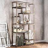 Furniture of America CM-AC6264CPN Elvira Champagne Display Shelf