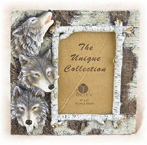 8.25 Inch Brown and White Wolf Pack Design Collectible Photo