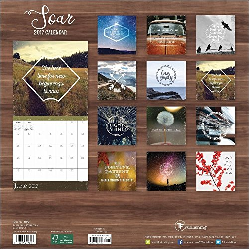 TF Publishing 17-1083 Wall Calendar 2017, Soar Photo #4