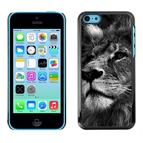 Paccase / Housse Coque Étui de protection pour - Lion Black White Picture Nature Big Cat - Apple Iphone 5C