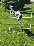 Dog Agility Equipment Single Bar Jumps | Set of 2 jumps