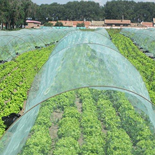 OriginA Garden Netting Insect Screen & Bird Netting, 5x50ft, Green, Mesh Netting