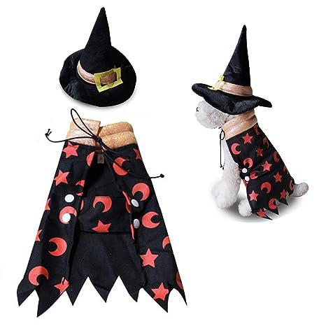 JLCYYSS Disfraz De Brujo De Halloween, Capa De Mago De Perrito De ...