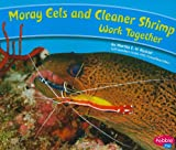 Moray Eels and Cleaner Shrimp Work Together, Martha E. H. Rustad, 1429661992