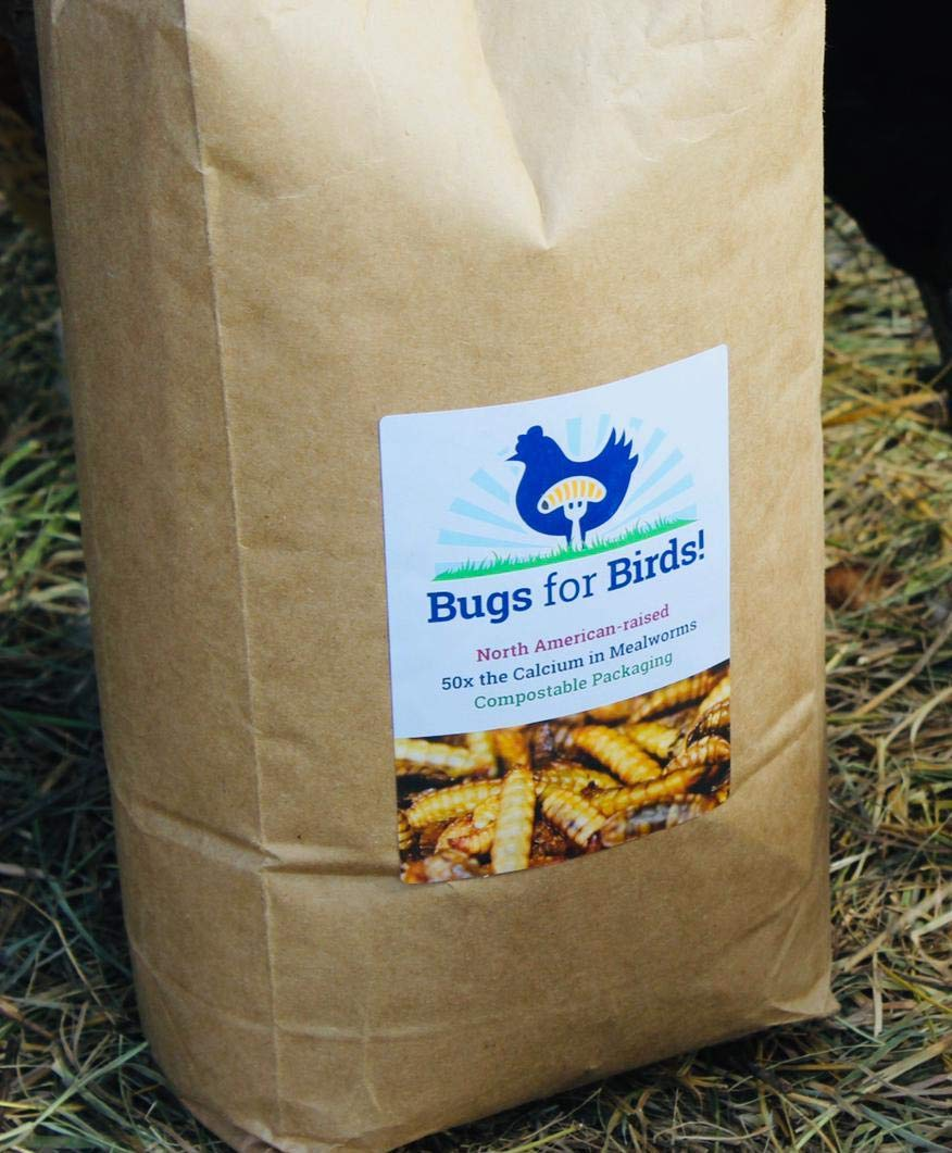 NORTH AMERICAN-RAISED Bugs for Birds! Better Than Mealworms - Dried BSF Larvae - Natural Chicken Feed Supplement / Wild Bird Treats - for Healthy Eggs and Feathers! (4lbs) by Bugs for Birds!