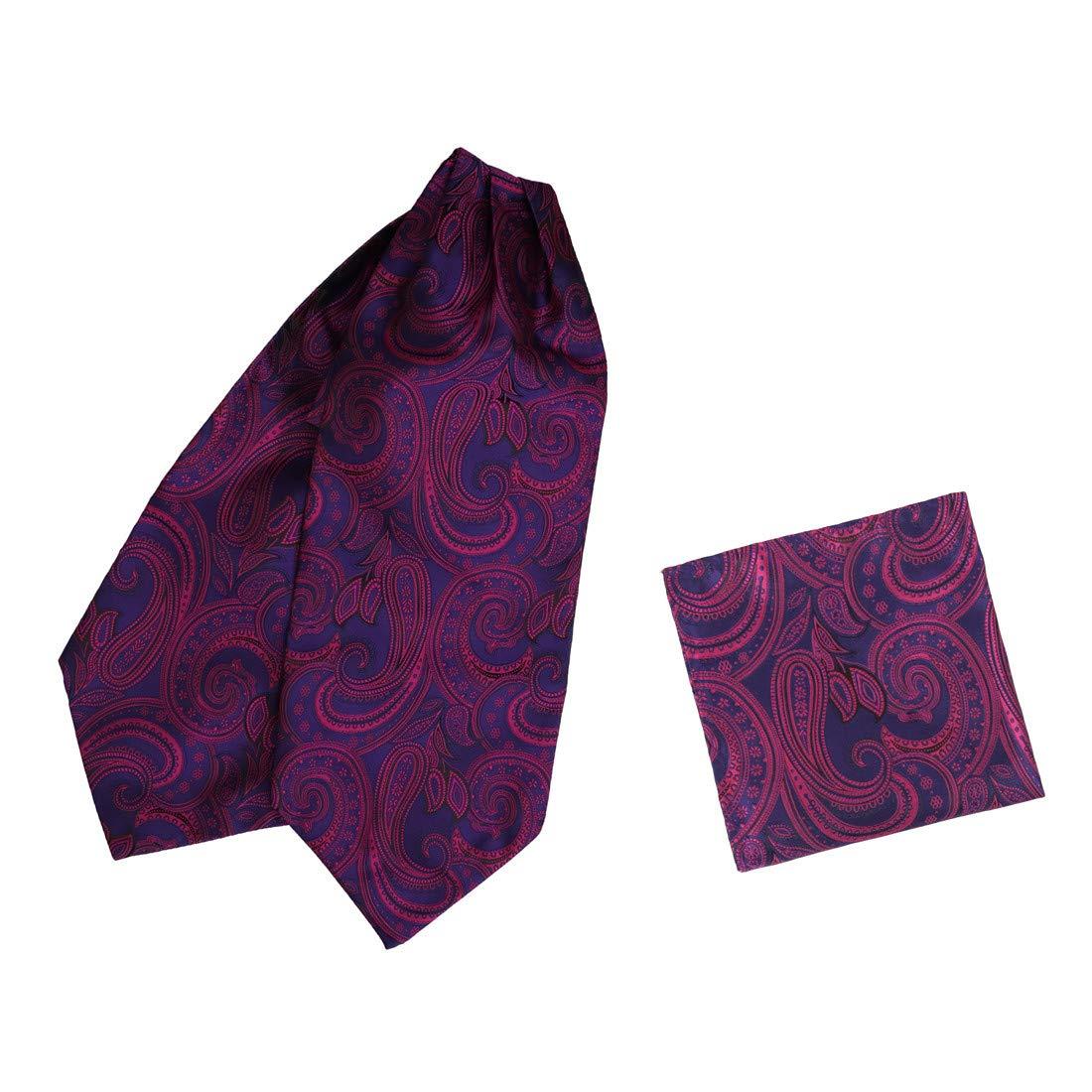 Epoint Mens Fashion Wedding Paisley Cravat Microfiber Ascot Tie Hanky Set