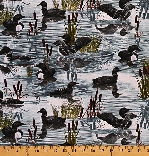 Cotton Loons Loon Bird Birds Pond Wildlife Cattail Cotton Fabric Print by The Yard (MICHAEL-C2795) (Print Fabric Wildlife)
