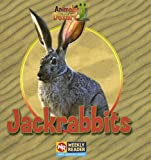 Jackrabbits, JoAnn Early Macken, 0836848284