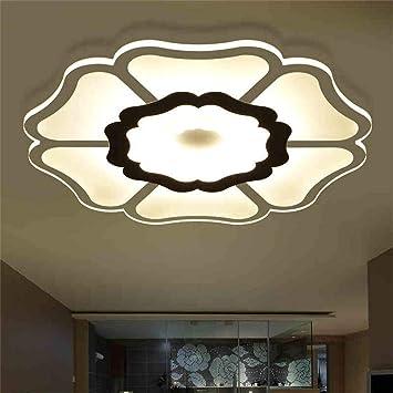 Amazon.com: XQY Lámpara de Techo, Hogar Salón Lámpara de ...