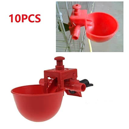amazon com hypeety automatic water drinking cups bird coop feed
