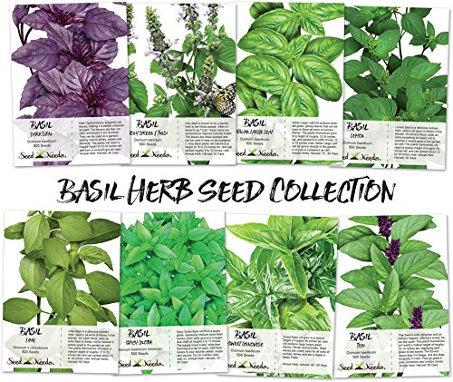 llection (8 Individual seed Packets) Non-GMO Seeds by Seed Needs ()