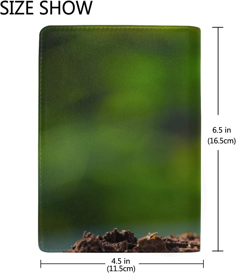 The Seed Grow From The Rich Soil Blocking Print Passport Holder Cover Case Travel Luggage Passport Wallet Card Holder Made With Leather For Men Women Kids Family