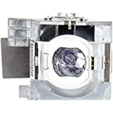 ViewSonic RLC-100 Projector Replacement Lamp for ViewSonic PJD7828HDL, PJD7720HD, PJD7831HDL Projectors