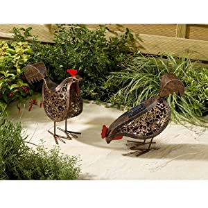 Hens solar light pack of 2 garden outdoors for Amazon oggettistica