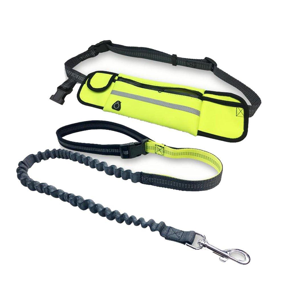 Peting Multi funzione vivavoce nylon guinzaglio del cane con riflettente banda e sacchetto impermeabile di immagazzinaggio Vita regolabile Belt Perfetto per Correre, Camminare, Formazione