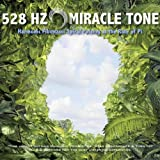528 Hz | Miracle Tone: Harmonic Fibonacci Spiral Pulsing at the Rate of Pi