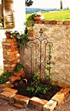 14 in. by 46 in. Decorative Metal Trellis Garden Stake with Scroll Accent Product SKU: GD229213