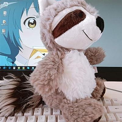 lzpoyaya Cartoon Raccoon Plush Toy, Lovely Raccoon Soft Stuffed Stuffed Doll Pillow, Niñas Niños Niños Regalo de cumpleaños 25cm (Gris) 1pcs: Juguetes y juegos