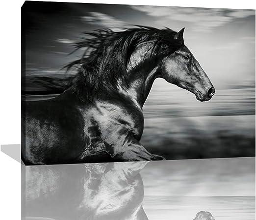 Black Friesian Horse Running on the Beach Poster Picture Art Framed Print