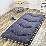 hxxxy Folding Tatami Floor mat,Portable Sleeping pad Queen-King Traditional Japanese futon Washable-A 120x200cm(47x79inch)