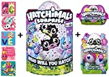 Hatchimals Surprise Twins Puppadee + BONUS CollEGGtible 2 Pack with Nest + Glittering Garden 2 Pack Egg Carton + 5 Shopkins Glitter Stickers!