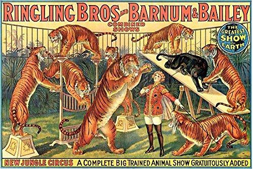Ringling Bros Barnum & Bailey Circus Poster (36 x 54)