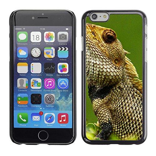 "Premio Sottile Slim Cassa Custodia Case Cover Shell // V00002866 lézard // Apple iPhone 6 6S 6G PLUS 5.5"""