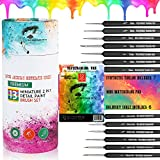 Premium 13 Detail Paint Brush Set 2 in 1 Includes 6