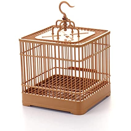 coil.c Jaula Decorativa de Metal para pájaros, Jaula para Plantas ...