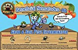 250 Million Live Beneficial Nematodes Hb - Soil Pest Exterminator
