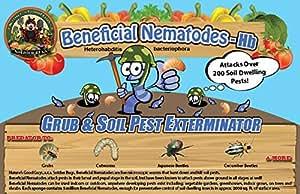 25 million live beneficial nematodes hb for Beneficial nematodes for termites