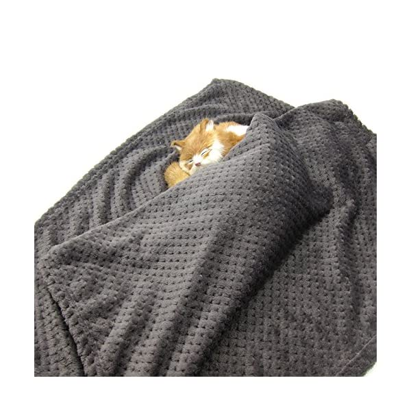 Alfie Pet – Mackenzie Fleece Blanket for Dogs and Cats – Color: Grey Click on image for further info. 2