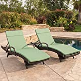 Ann Outdoor Wicker Adjustable Chaise Lounge with Arms w/ Jungle Green Cushion (Set of 2)