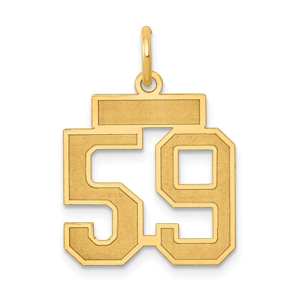 14k Yellow Gold Small Satin Number 59 Charm