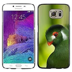 Paccase / SLIM PC / Aliminium Casa Carcasa Funda Case Cover para - parrot green trees tropical bird nature - Samsung Galaxy S6 SM-G920