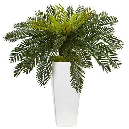 Cycas Plant - Nearly Natural Cycas Artificial Plant in White Planter, Green
